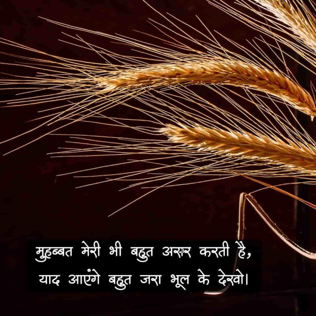 Love Shayari Ke Sath Download Hd